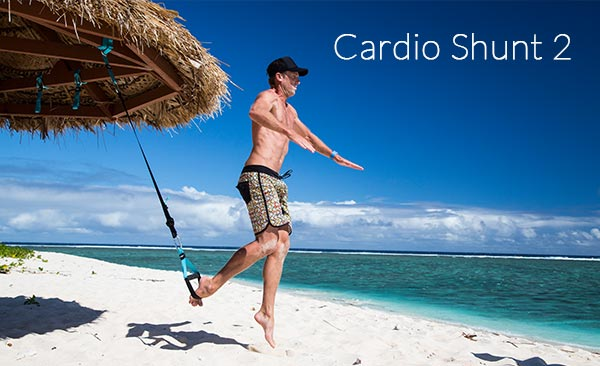 Cardio Shunt 2